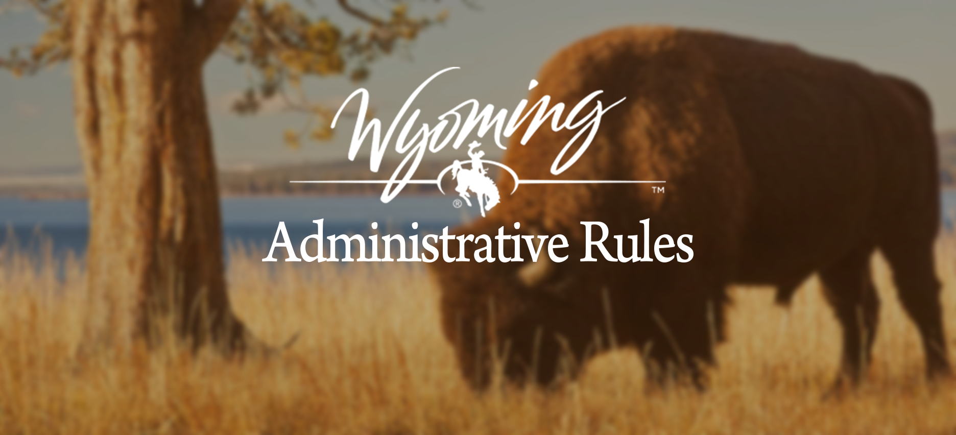 Visit the Administrative Rules website on phones, tablets or computers?